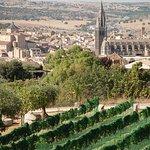 Vistas panorámicas de nuestra ciudad y nuestro viñedos