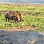 Mateya Safari Lodge Φωτογραφία