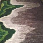 New carpet on floors