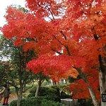 Fujikawa Craft Park