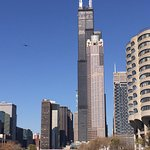 Willis Tower from the river
