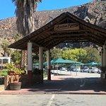 Avalon Springs