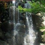 Anderson Japanese Gardens Foto