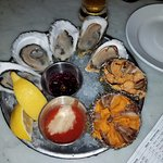 Oysters and sea urchin