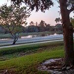 Overlooking walking path and lake.