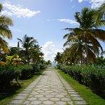 Main walkway to beach (Rendezvous Bay)