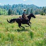 Cherokee Park Ranch Photo