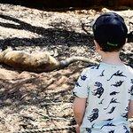 Perth Zoo Foto