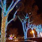Wonderful Winter Lighting!