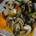 stir fried clam
