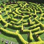 Labyrinth 18+