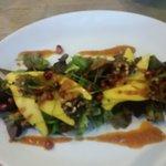 Mango Salad Starter