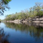 The Suwannee River - one of the campsite boundaries