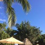 Tween Waters Inn Island Resort & Spa Foto