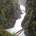 Upper Falls at Little Qualicum Falls Park