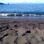 Foto de Playa de la Arena