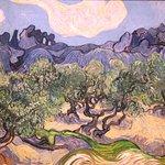 Van Gogh/MoMA