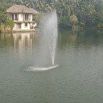 Foto di Vedic Village Spa Resort