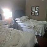 Room 559_2