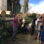 Foto de Tuscan Wine Tours by Grape Tours