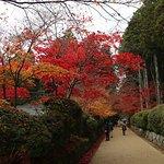 Photo de Mount Koyasan