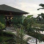 Nice Restaurant and surrounding area.