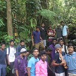 me and my 16 friends inside sinharaja