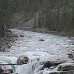 Photo de Sunwapta Falls Rocky Mountain Lodge
