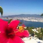 Las Brisas Terrace Views