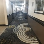 Comfort Inn and Suites Kent Foto