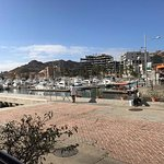 Cabo Marina view from the restaurant