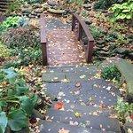 Botanical Gardens in fall 2016