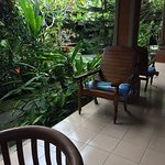 This place is heaven! A wonderful spot tucked away in town. Minutes away from the action of Ubud