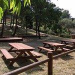 Area pic-nic e barbecue