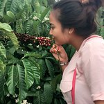 Photo of Trung Nguyen Coffee Village