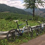 Foto de Chiang Rai Bicycle Tour