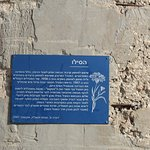 the story of the Silo (only in Hebrew)