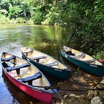 Canoe the Macal River and enjoy the serenity of Mystic River Resort.