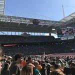 Dolphin Stadium Foto