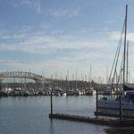Auckland Harbour Bridge Foto