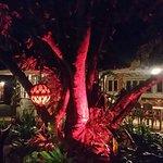 Fantástica iluminação noturna do jardim.