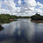 Manatee Park Foto