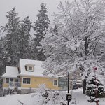 Winter at Selkirk Mountains B&B