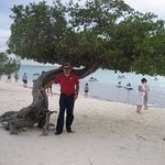 Jack - Aruba