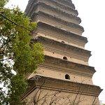 Photo of Small Goose Pagoda