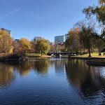 Photo of Boston Public Garden