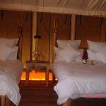 Roika Tarangire Tented Lodge Photo