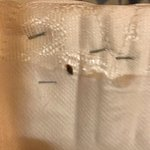 Bed Bug on box spring.