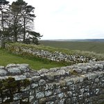 Hadrain's Wall going West
