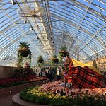 Phipps Conservatory Foto